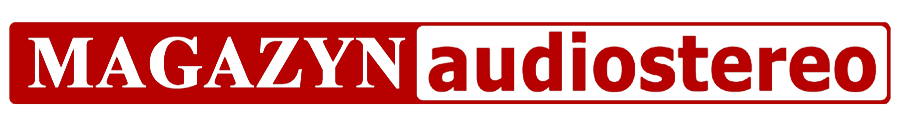 Logo Magazyn