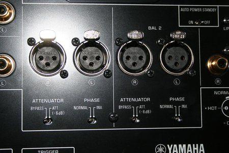 yam7.JPG