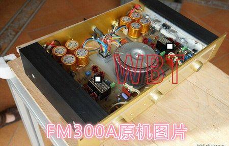 FM300a 4.jpg